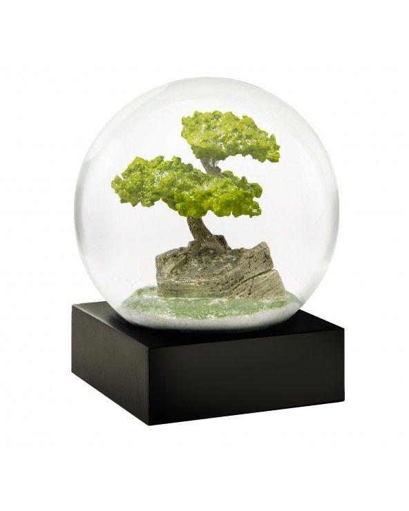 Cool Snow Globes Snow globe bonsai tree